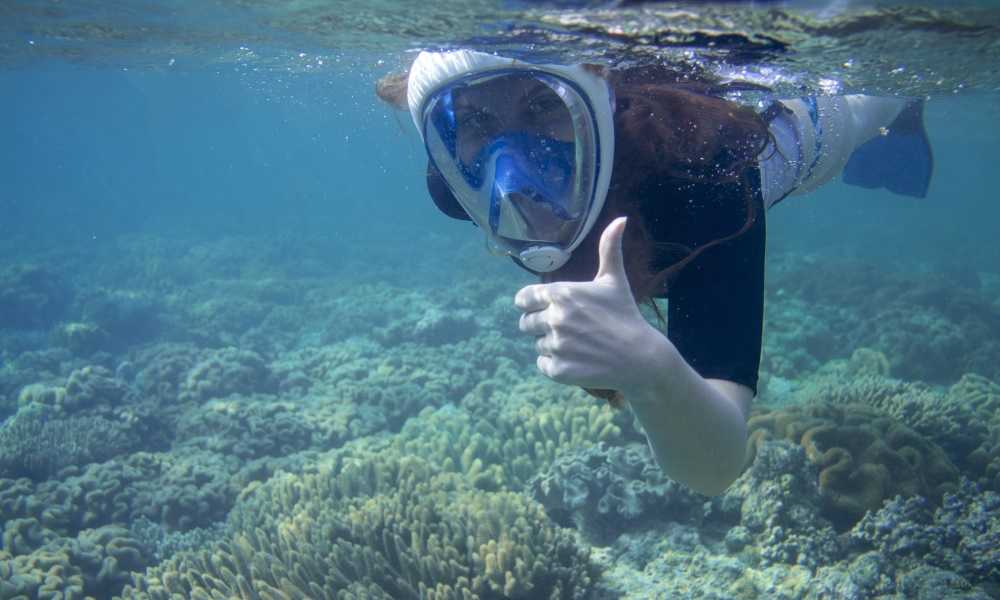 Best Snorkel Masks of 2018