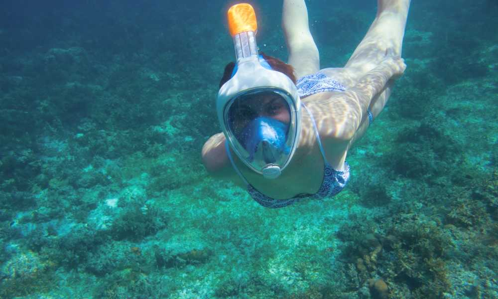 Decathlon Subea Easybreath Full Face Snorkel Mask Review